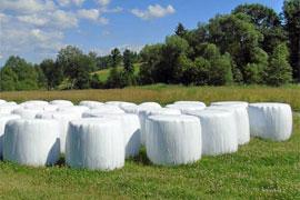 Ilustracja do informacji: Usuwanie folii rolniczych i innych odpadów pochodzących z działalności rolniczej''