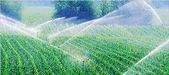 Ilustracja do informacji: Zabezpiecz gospodarstwo przed suszą, złóż wniosek o dotację na inwestycje w nawadnianie gospodarstwa rolnego