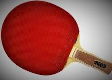 Ilustracja do informacji: XIII Turniej Tenisa Stołowego o Puchar Wójta Gminy Świętajno